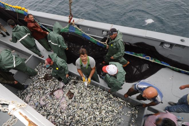 Balıkçılar için av yasağı başladı