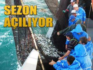 Balıkçılık sezonu açılıyor