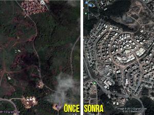 Gezi Parkını bırak Eczacıbaşı Ormanadaya bak