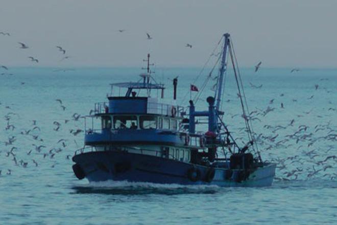 Balıkçılar ağları saldı