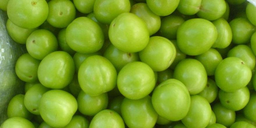 Hamilelikte Yeşil Erik Neden Önemlidir?