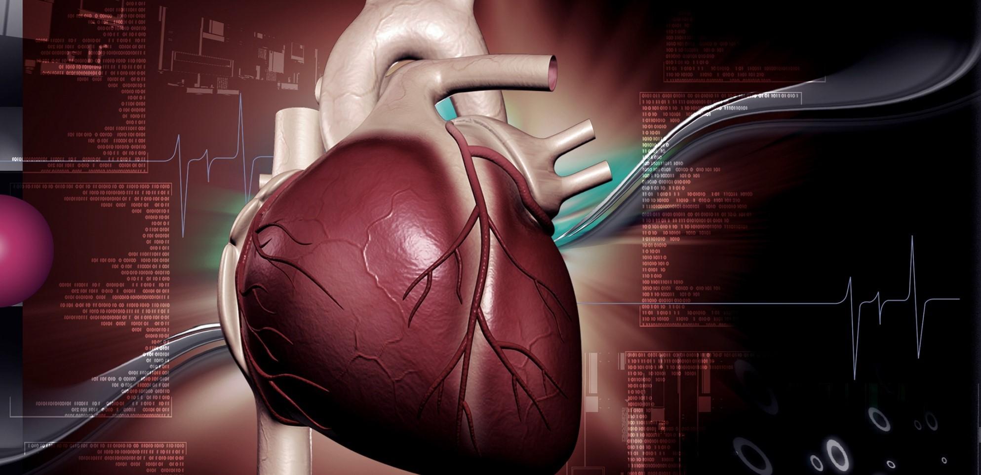 Kalp Dış Yüzeyinde Oluşan Sorunlar İçin Epikardiyal Ablasyon