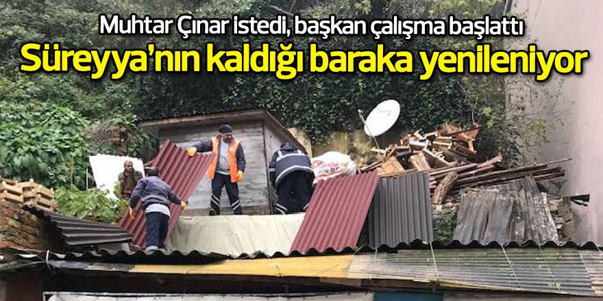 Muhtar Çınar istedi, başkan çalışma başlattı