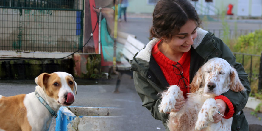 Sarıyer Belediyesi'nden sokak hayvanlarına yönelik örnek çalışmalar