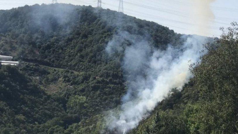 Sarıyer'de korkutan orman yangını
