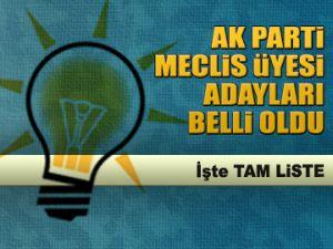 AK Parti Meclis Üyesi adayları