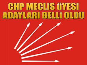 CHP Meclis üyesi adayları
