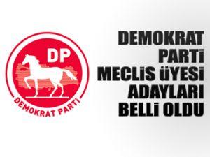 DP Meclis Üyesi adayları