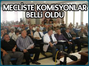 Mecliste komisyonlar belli oldu