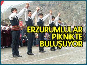 Erzurumlular piknikte buluşuyor