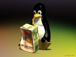 Windowsu kaybetmeden Linux nasıl kurulur?