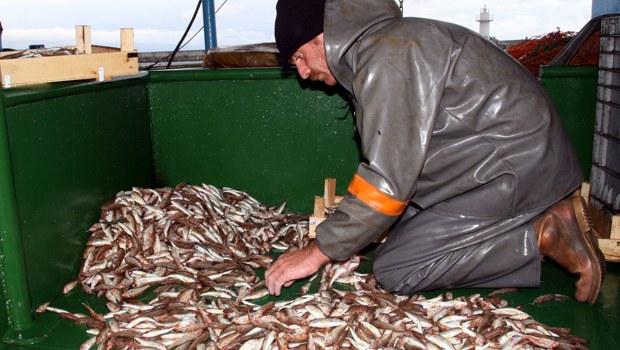 Balıkçılar Vira Bismillah diyerek açıldı