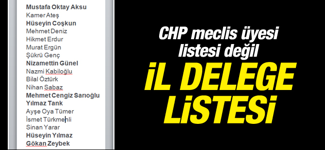 CHP meclis üyesi listesi değil İL DELEGE LiSTESi