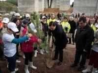 Kesilen ağaçların yerine yeni fidanlar diktiler
