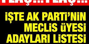 İşte 2014 AK Parti Sarıyer Meclis Üyesi Adayları listesi