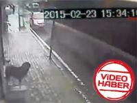 Otobüs kazası dehşeti kamerada! - VİDEO