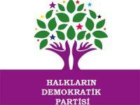 HDP'nin 2. Bölge adayları