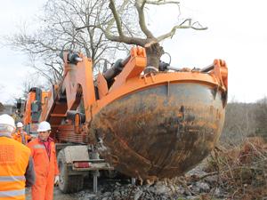 Örnek projede ağaç taşıma işlemleri başladı